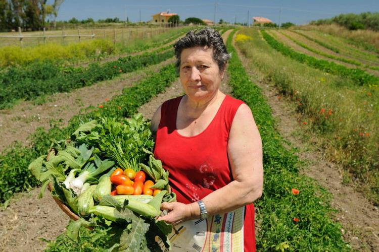 Agriturismo I Vigneti