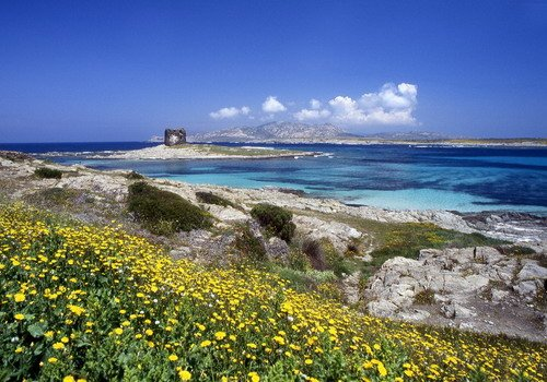 Sardinia Stintino