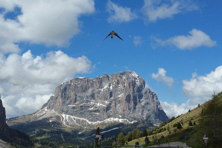 Fly Drive Trentino Zuid-Tirol