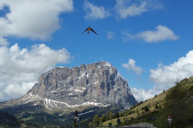 Rondreis Trentino Zuid-Tirol