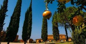 Toscane Vakantie