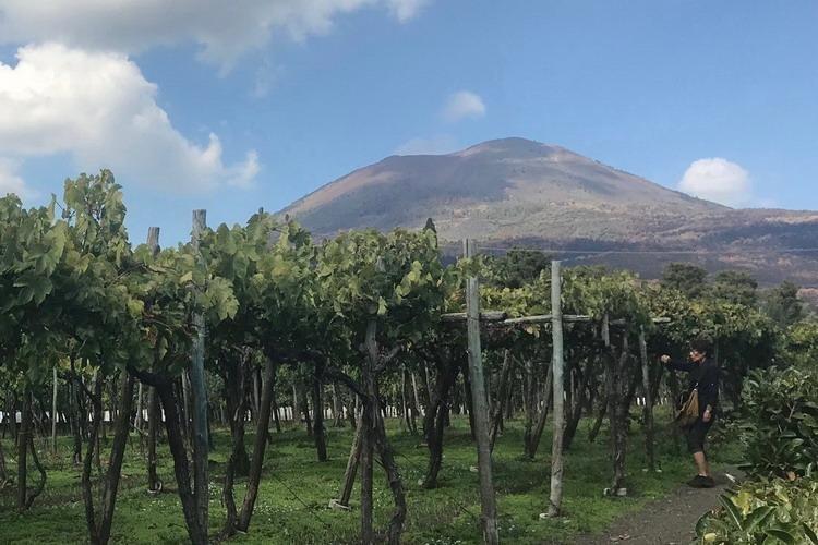 Caruso Place - Vesuvius